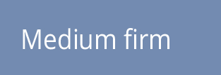 MediumFirm